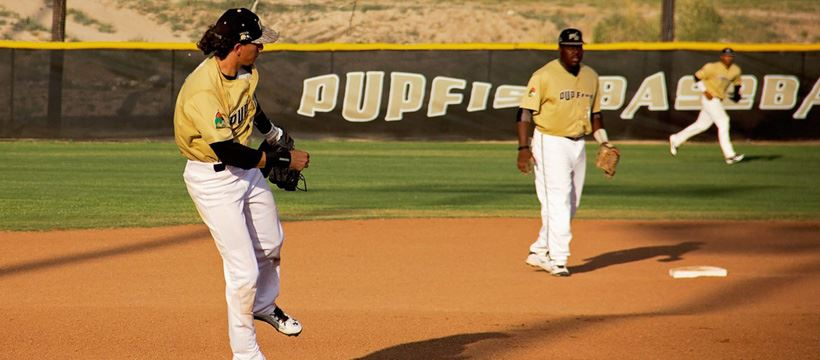 Pupfish Baseball field