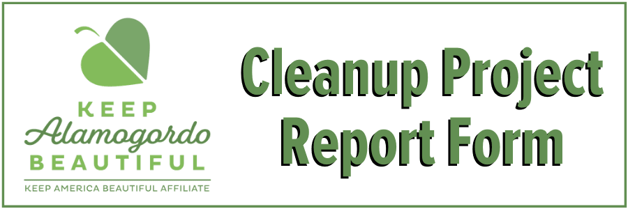 Cleanup Project Report Form Button